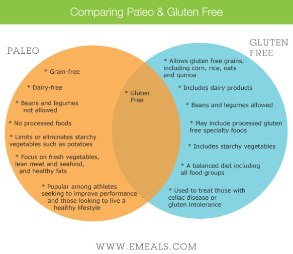 Comparing-Paleo-vs-Gluten-Free1